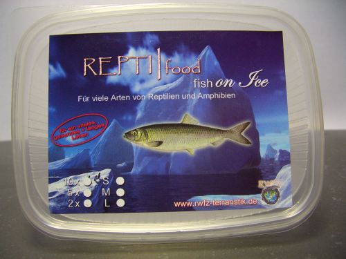 Repti/food Fish on Ice