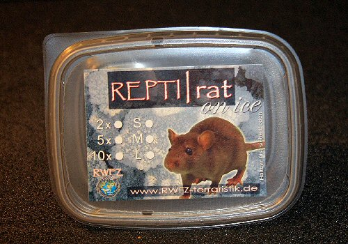 REPTI | rat on ice